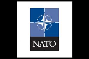 NSN (Nato) Codified (Defence & Aviation)