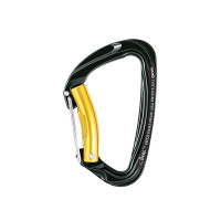 Beal Twin Auto Belay Carabiner (BMCTAB) pic 1.jpg