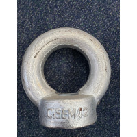 42mm Eye Nut With Collar, DIN582, Metric Threads WLL 7T