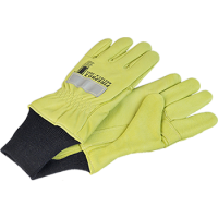 X-LARGE FirePro2 Level 2 Structural Firefighting Glove