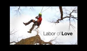 Petzl - Labor of Love - Tree care
